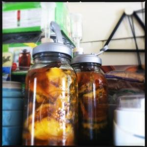 tepache fermenting
