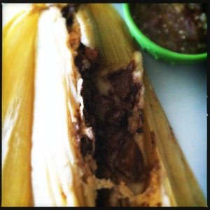 steak and mushroom tamale