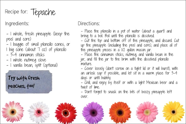 tepache recipe card